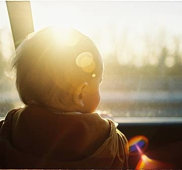 Category baby looking through car window 4100813