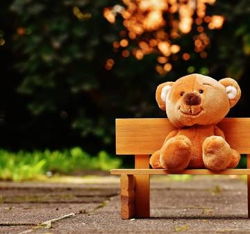 Category brown teddy bear on brown wooden bench outside 207891